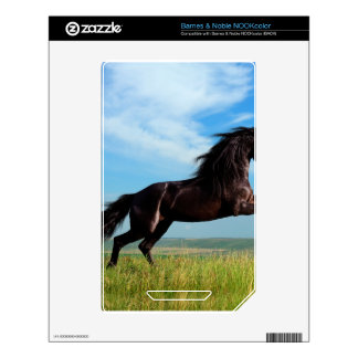 black and wild Stallion Rearing Horse Decal For The NOOK Color