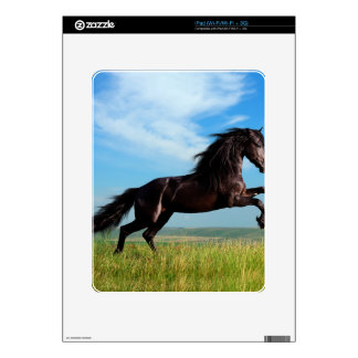 black and wild Stallion Rearing Horse Skin For iPad