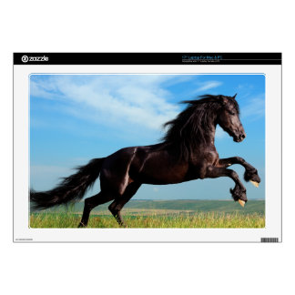 black and wild Stallion Rearing Horse Laptop Skins