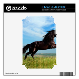 black and wild Stallion Rearing Horse Decals For iPhone 3