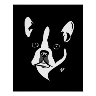 Black and Wite Boston Terrier Posters