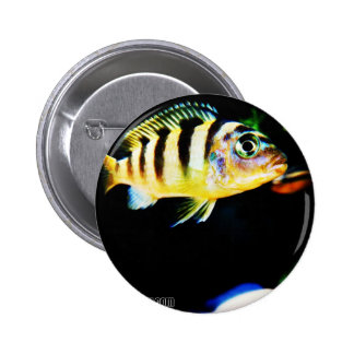 Black and Yellow African Cichlid Fish Button