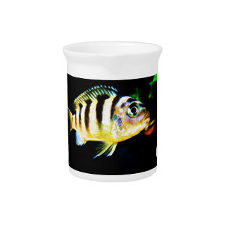 Black and Yellow African Cichlid Fish Drink Pitcher