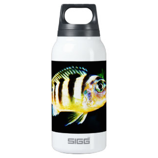 Black and Yellow African Cichlid Fish Insulated Water Bottle