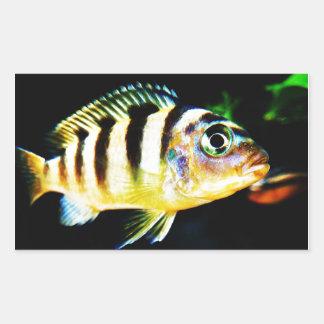 Black and Yellow African Cichlid Fish Rectangular Sticker