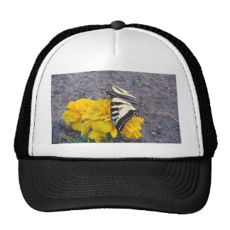 Black and Yellow Butterfly Trucker Hat