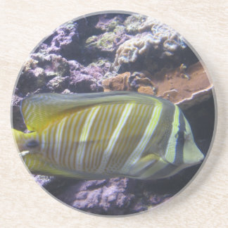 Black and yellow Fish Drink Coaster