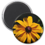 Black and Yellow Flower Magnet Magnets
