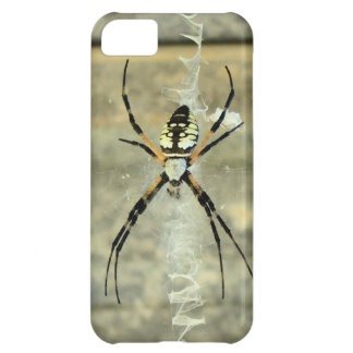 Black and Yellow Garden Spider iPhone 5 Case