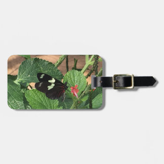 Black and Yellow lovely butterfly Bag Tag