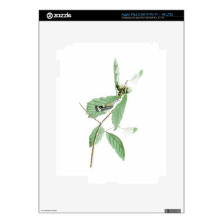 Black and Yellow Warbler Audubon Birds of America iPad 3 Decal
