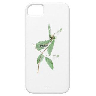 Black and Yellow Warbler Audubon Birds of America iPhone SE/5/5s Case