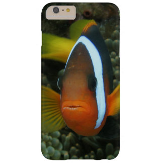 Black Anemonefish (Amphiprion melanopus) in Barely There iPhone 6 Plus Case