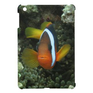 Black Anemonefish (Amphiprion melanopus) in Case For The iPad Mini