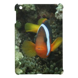 Black Anemonefish (Amphiprion melanopus) in iPad Mini Cases