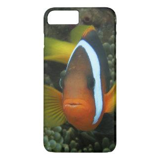 Black Anemonefish (Amphiprion melanopus) in iPhone 8 Plus/7 Plus Case