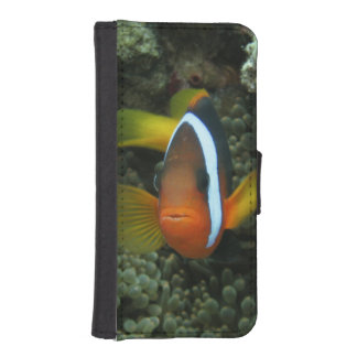 Black Anemonefish (Amphiprion melanopus) in iPhone SE/5/5s Wallet