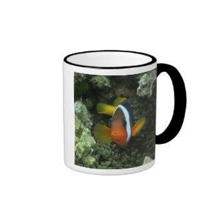 Black Anemonefish (Amphiprion melanopus) in Ringer Coffee Mug