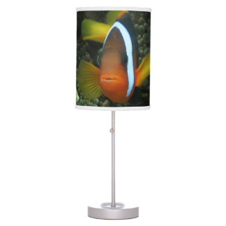Black Anemonefish (Amphiprion melanopus) in Table Lamps