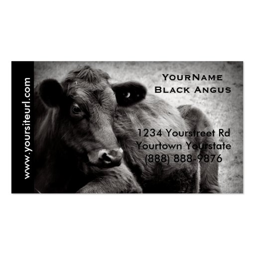 Black Angus Cattle Photo for  Beef Ranch or Farm Business Card Template