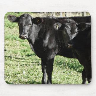 Black Angus Heifer Calves Mousepads