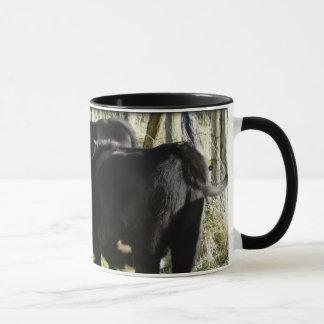Black Angus Heifer Calves Mug