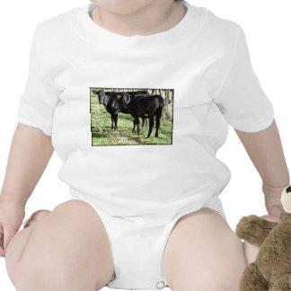 Black Angus Heifer Calves Bodysuit