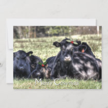 Black Angus Holly Merry Cowmas Greeting Holiday Card