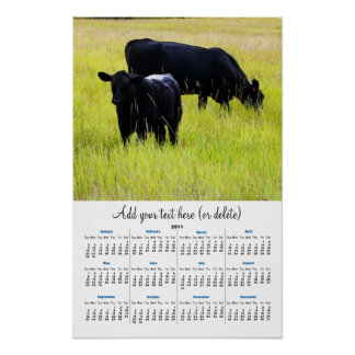 Black Angus in Yellow Grass 2011 wall  calendar Poster