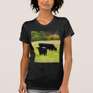 Black Angus Pair in Field T-shirt