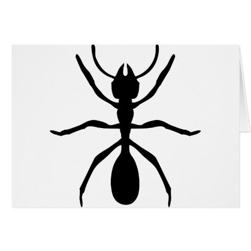 black ant greeting cards