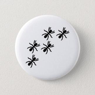 black ant trail button