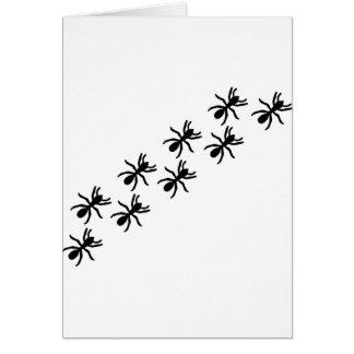 black ants trail card