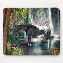 Black Appaloosa Horse Waterfall Background Mouse Pad