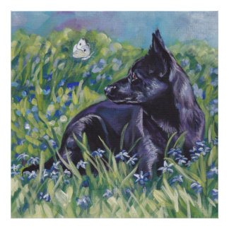 Black Australian Kelpie Dog Fine Art Print Poster