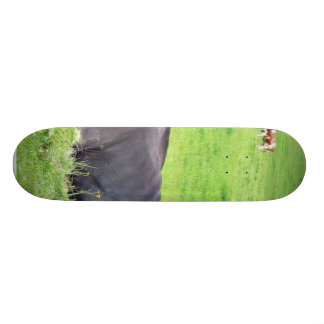 Black Austrian Cow Laying On The Ground Skateboard Deck