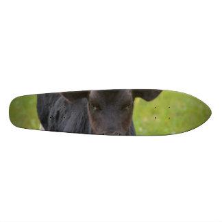 Black Baby Calf Skateboard Deck