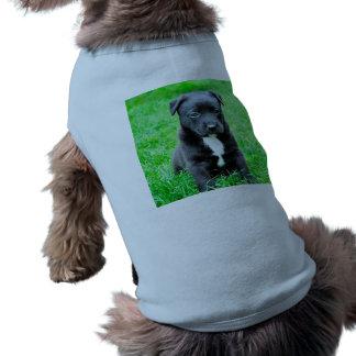 Black Baby Dog Shirt