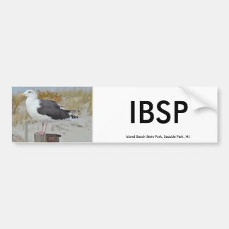 Black Backed Gull Seagull Series Bumper Sticker