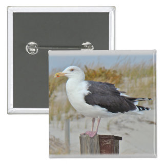 Black Backed Gull Seagull Series Button