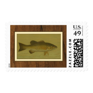 Black Bass on a Green Background Postage