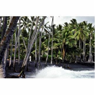 Black Beach - Hawaii Photo Cut Outs