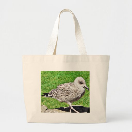Black Beaked Sea Bird Close Up Canvas Bag