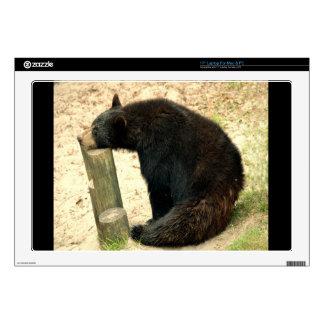 "Black Bear (Alabama, Louisiana, New Mexico) 17"" Laptop Decals"