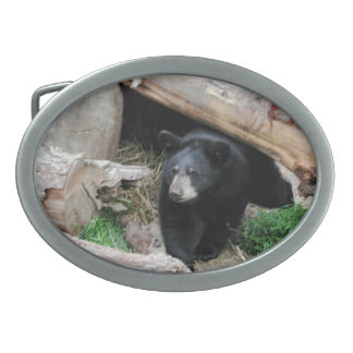Black Bear - American Mammal Collection Belt Buckle