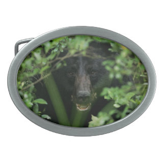 Black Bear - American Mammal Collection Oval Belt Buckle