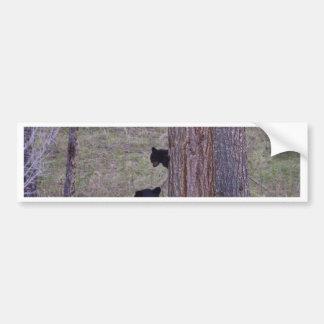 Black Bear and Cub Bumper Sticker