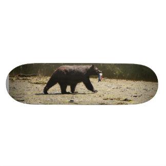 Black bear and salmon on skateboard