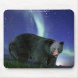 BLACK  BEAR & AURORA Mousepad