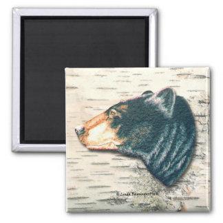 Black Bear Birch Bark 2 Inch Square Magnet